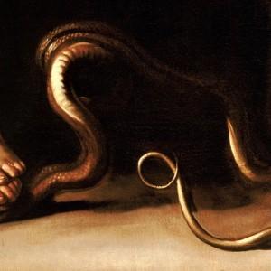 Particolare-serpente-schiacciato